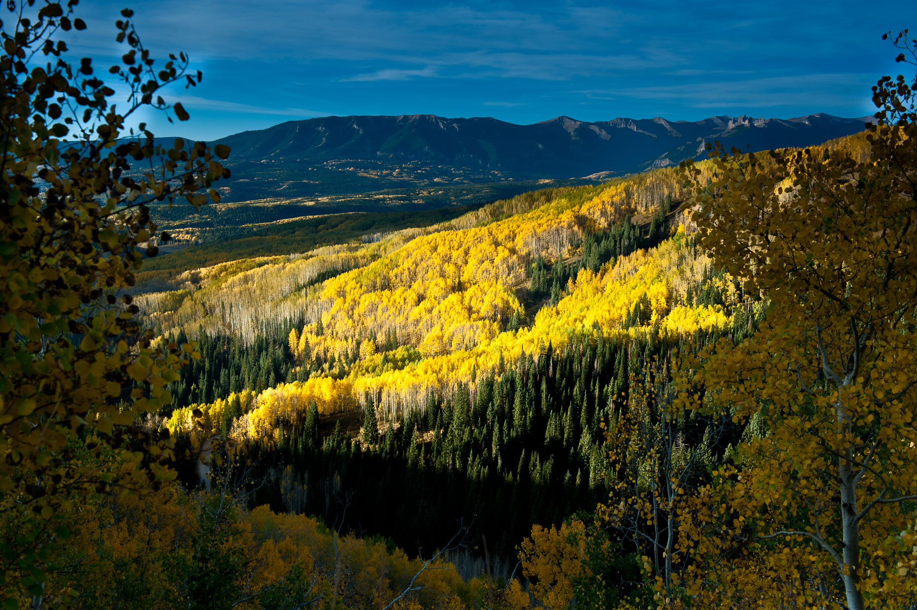 colorado_fall_color_4